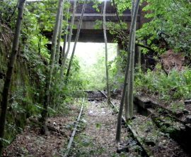 Railway line, at Totmonslow